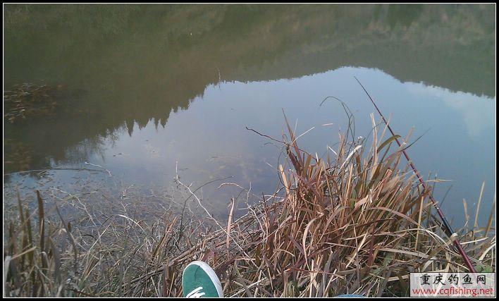 nEO_IMG_IMAG1351.jpg