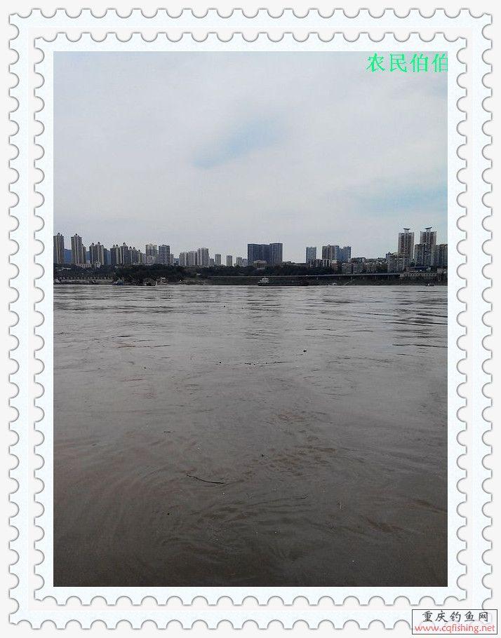 IMG_20130710_154056.jpg