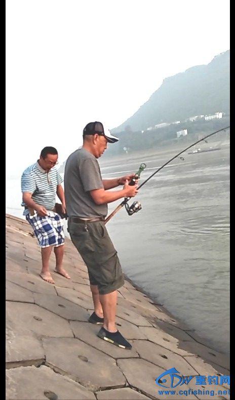 用控鱼器准备起鱼