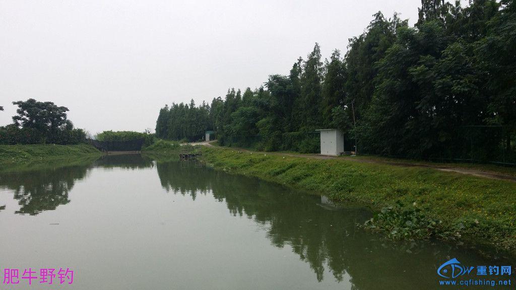 小河25.jpg