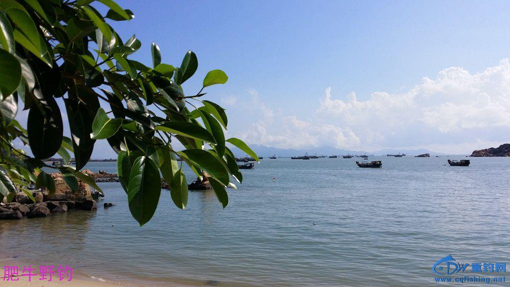 铜鼓海滩09.jpg