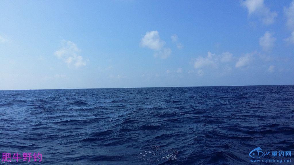 海景7.jpg
