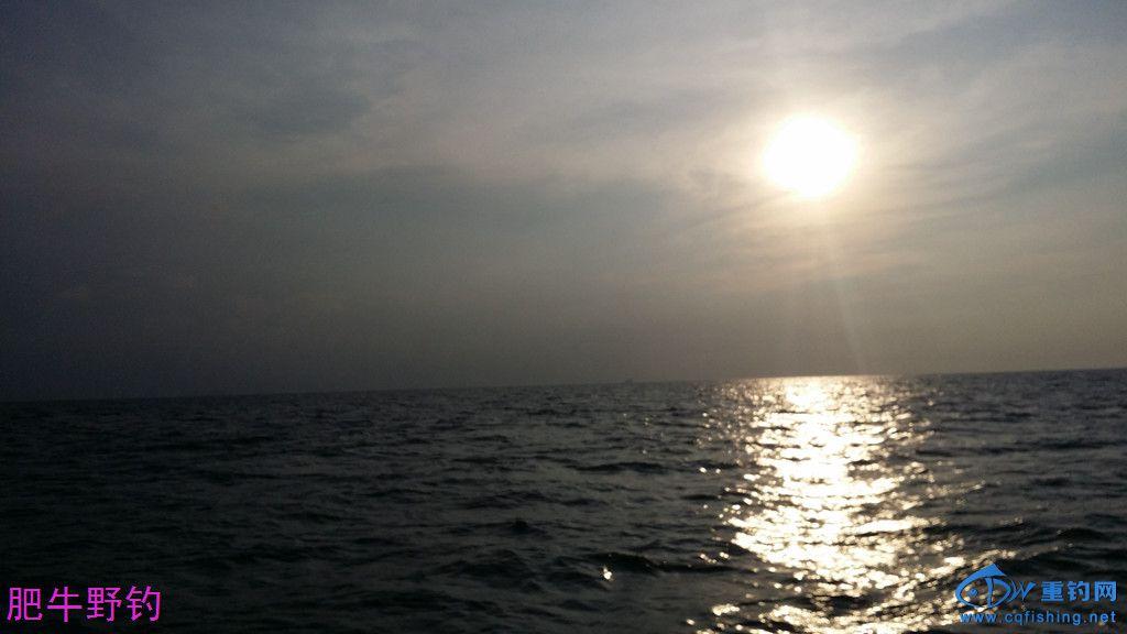 朝阳45.jpg