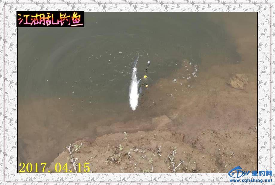 QQ图片20170415215238.jpg