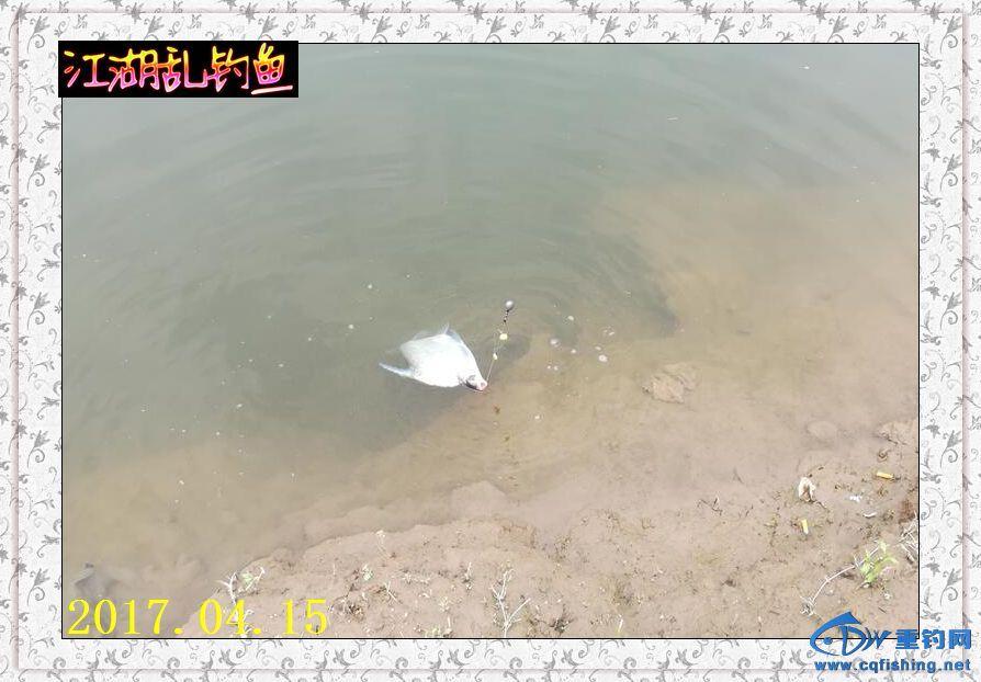 QQ图片20170415215303.jpg