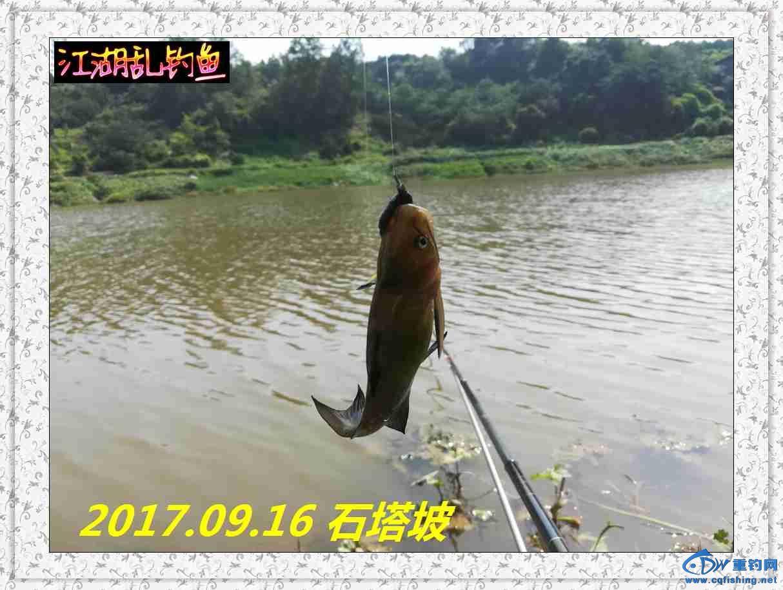 QQ图片20170918213737.jpg