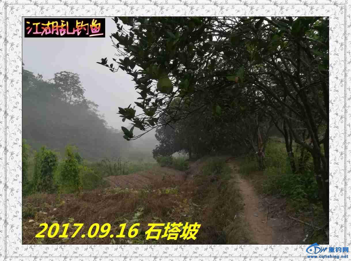 QQ图片20170918213254.jpg