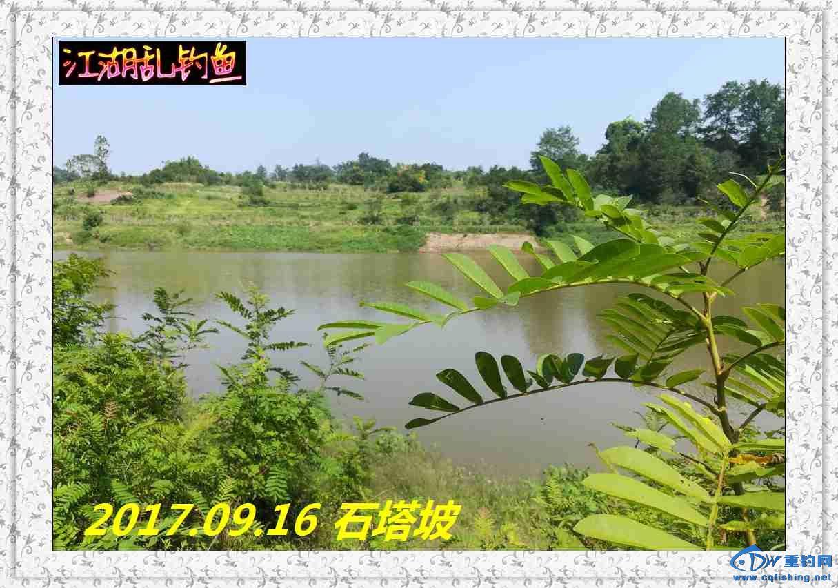 QQ图片20170918214147.jpg