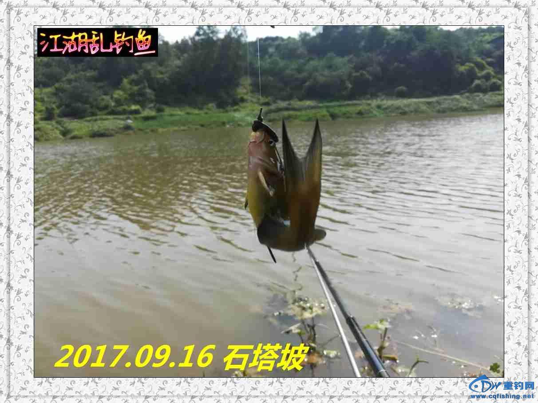 QQ图片20170918213828.jpg