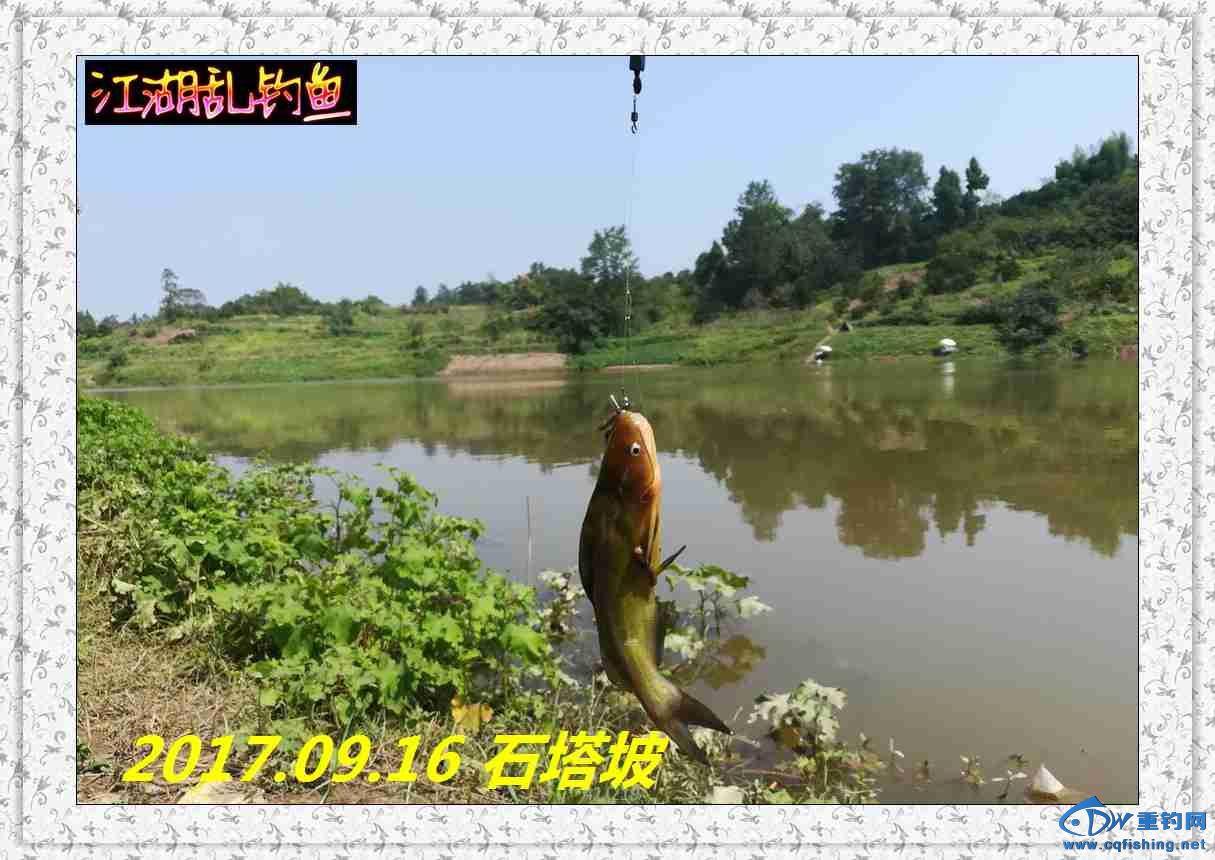 QQ图片20170918214006.jpg