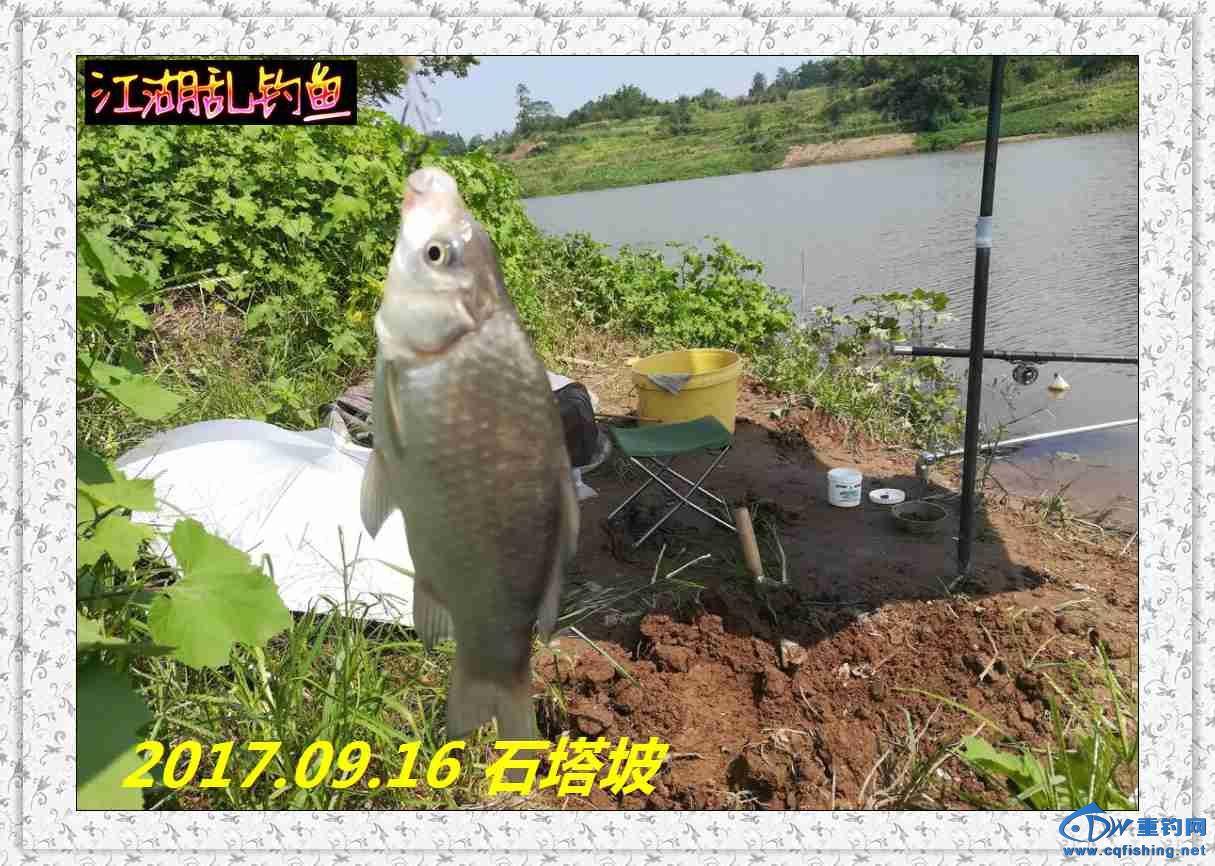 QQ图片20170918213915.jpg