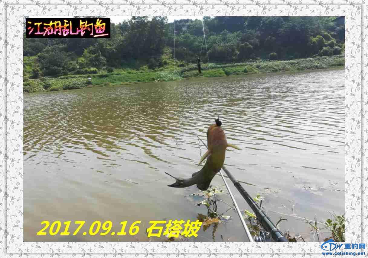 QQ图片20170918215758.jpg
