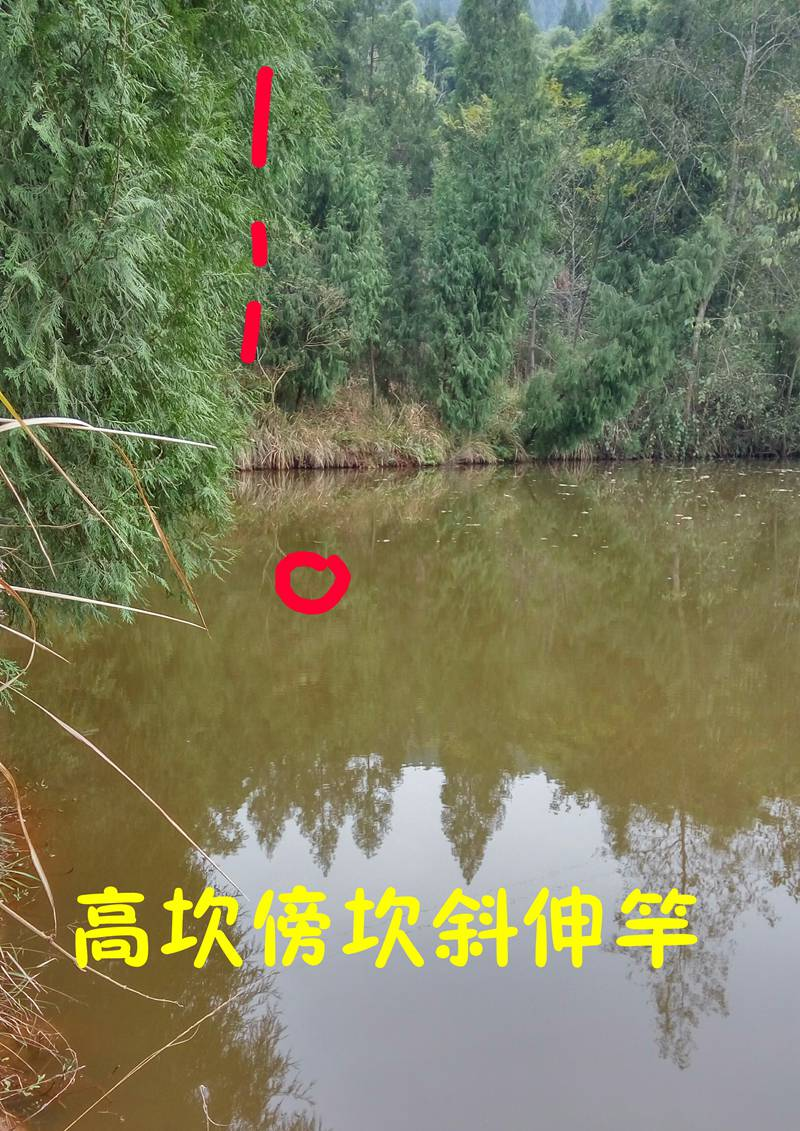 IMG_20171215_123200_副本.jpg