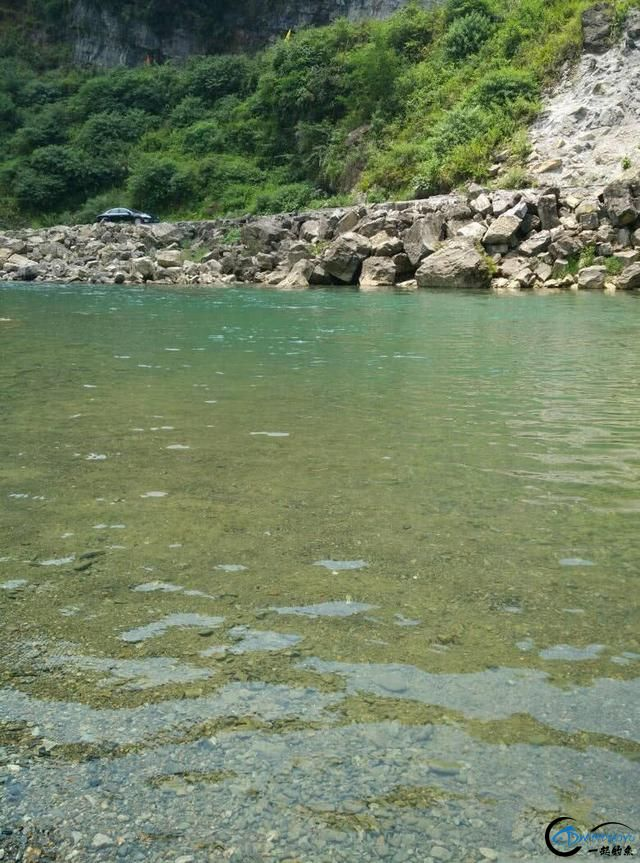 此鱼是西南地区的钓鱼者专属美味,对水质要求极高-12.jpg