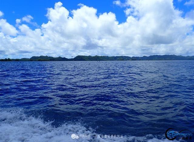 出走帕劳,看船长十八般海钓方式-6.jpg