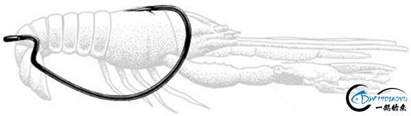 路亚德州钓组软饵挂法、操作手法详细介绍-14.jpg