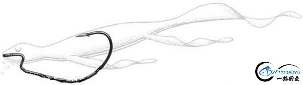 路亚德州钓组软饵挂法、操作手法详细介绍-19.jpg