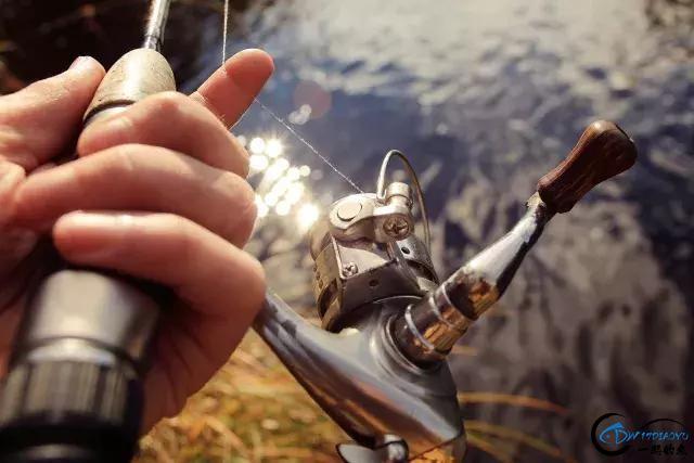 这家渔具店很好玩 钓鱼人自述-3.jpg