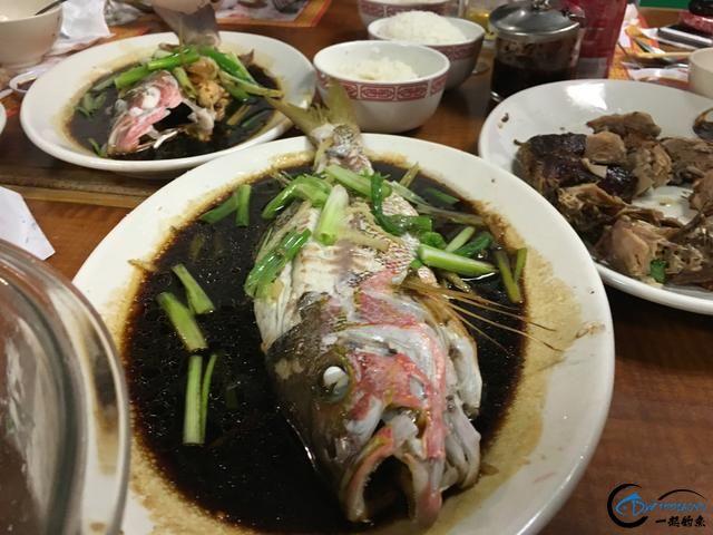 好几斤重的鱼只是被当作鱼饵来用,国内钓鱼人看的咬牙切齿-6.jpg