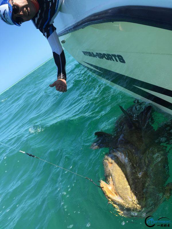好几斤重的鱼只是被当作鱼饵来用,国内钓鱼人看的咬牙切齿-20.jpg