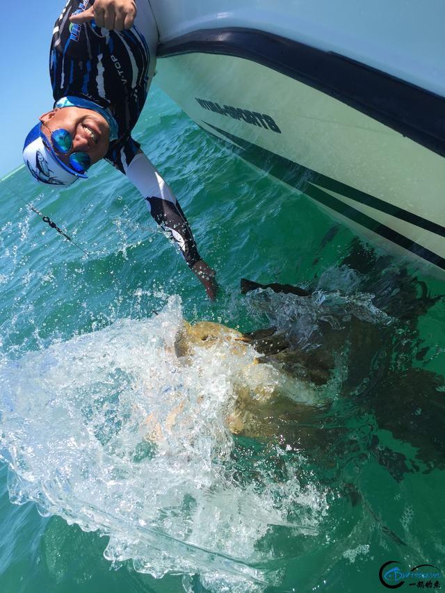好几斤重的鱼只是被当作鱼饵来用,国内钓鱼人看的咬牙切齿-22.jpg