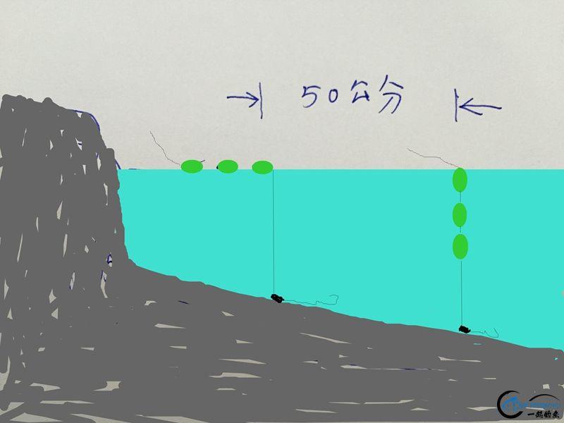 IMG_1256(1).JPG