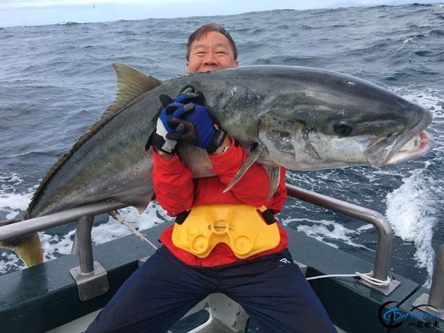 这也许是钓鱼人最强的炫富方式了,晒渔获拉仇恨,看谁比我狠-12.jpg