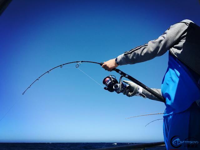 见过无数的钓鱼,但是像这样奢侈的钓鱼还真的是第一次见-3.jpg