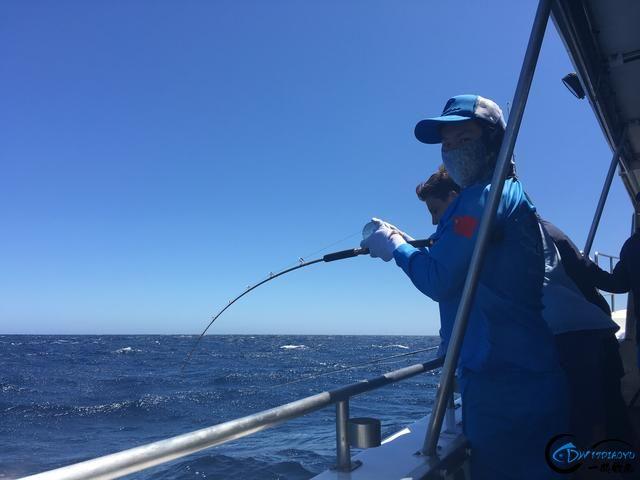 见过无数的钓鱼,但是像这样奢侈的钓鱼还真的是第一次见-7.jpg