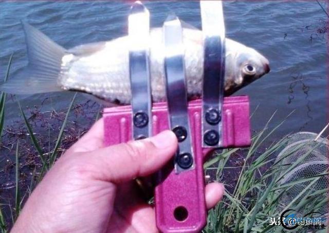 """盘点钓鱼中6件""""多余""""的装备,看似很厉害实际却没什么用-6.jpg"""