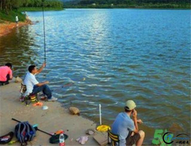 秋季钓鱼,用这款窝料上鱼效果真是太好了-1.jpg