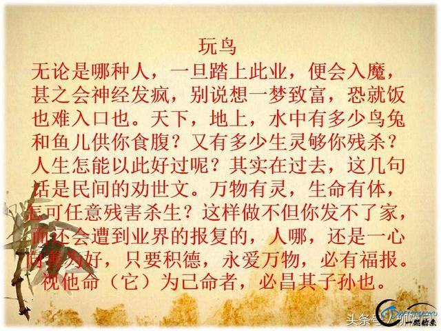 俗语:钓鱼穷三年,玩鸟毁一生;一朝学会狗撵兔,从此踏上不归路-5.jpg