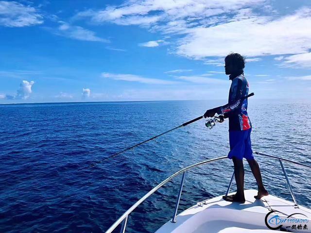 游钓马尔代夫体验了这辈子最疯狂的一次海钓!整个船都钓满了-3.jpg