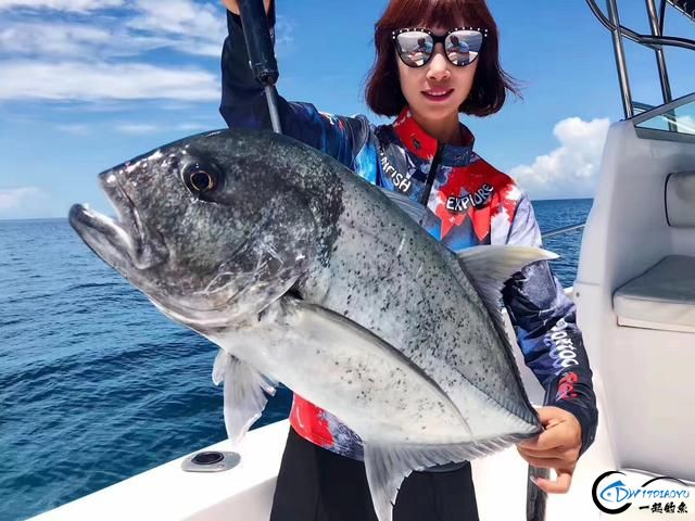 游钓马尔代夫体验了这辈子最疯狂的一次海钓!整个船都钓满了-7.jpg