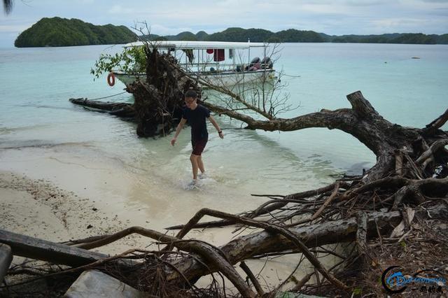 30岁第一次出境游,认真的记录了我的帕劳吃住行~-18.jpg