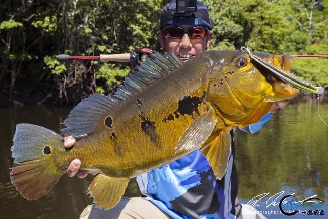 亚马逊河才是钓鱼人的终极钓场,水中巨物无数,就怕你嗨不住-3.jpg