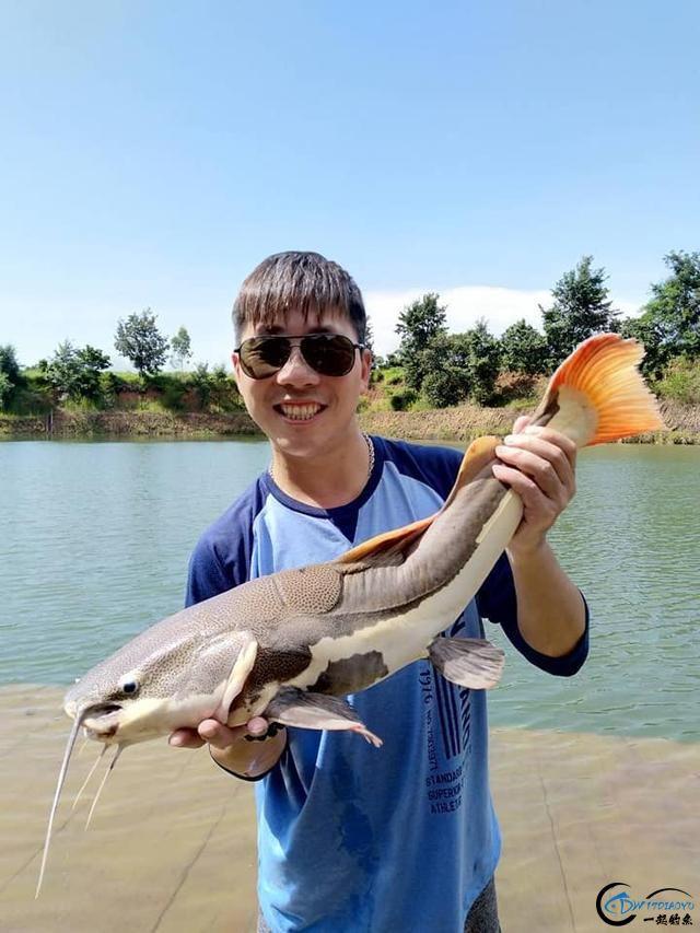 亚马逊河才是钓鱼人的终极钓场,水中巨物无数,就怕你嗨不住-8.jpg