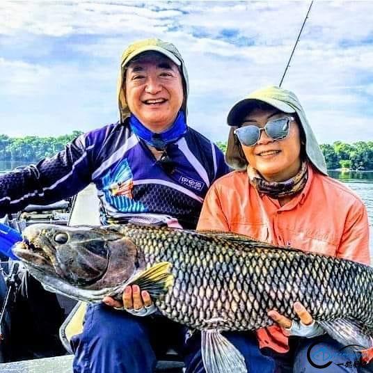 游钓亚马逊钓获巨骨舌鱼后不仅可以烤鱼,鱼皮更能做成皮鞋-7.jpg