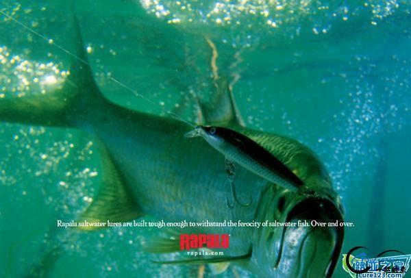 钓鱼教学:选择一枚合格的(路亚)假饵-3.jpg