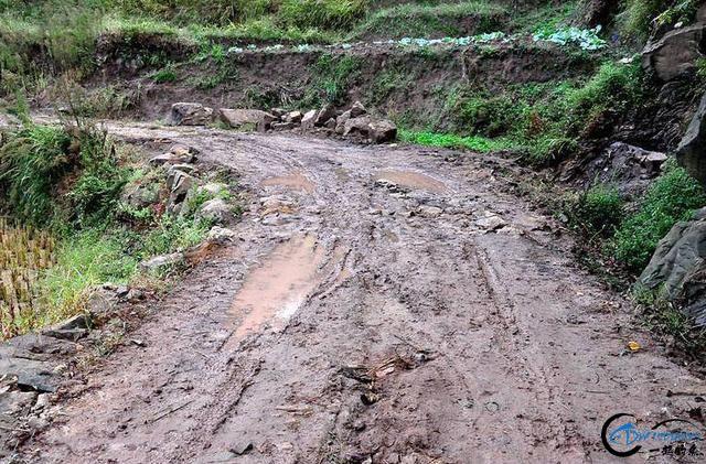 这里还是泥巴路,鱼多没人钓,水库不要钱-1.jpg