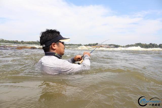 游钓亚马逊的中国钓鱼人,这是用生命在钓鱼啊,渔获真过瘾-3.jpg