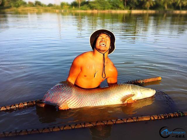 游钓亚马逊的中国钓鱼人,这是用生命在钓鱼啊,渔获真过瘾-18.jpg