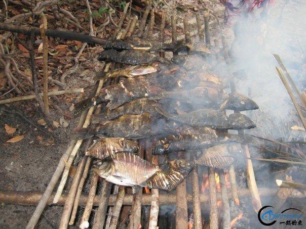 游钓亚马逊的中国钓鱼人,这是用生命在钓鱼啊,渔获真过瘾-20.jpg