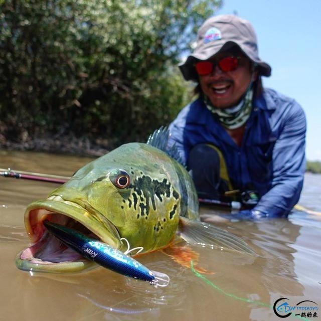 游钓亚马逊钓场纵然很过瘾刺激,但是一定要小心森蚺和巨蟒-11.jpg