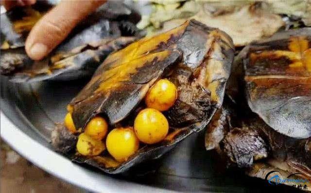 游钓亚马逊河挑战凯门鳄和森蚺,品尝丛林中最为原始的美食-12.jpg