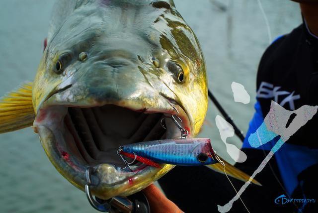 精选54张钓鱼图,分享给小伙伴们,年年有鱼!-38.jpg