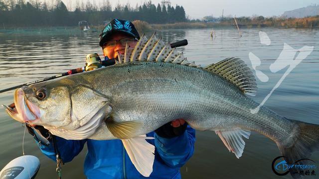 精选54张钓鱼图,分享给小伙伴们,年年有鱼!-51.jpg