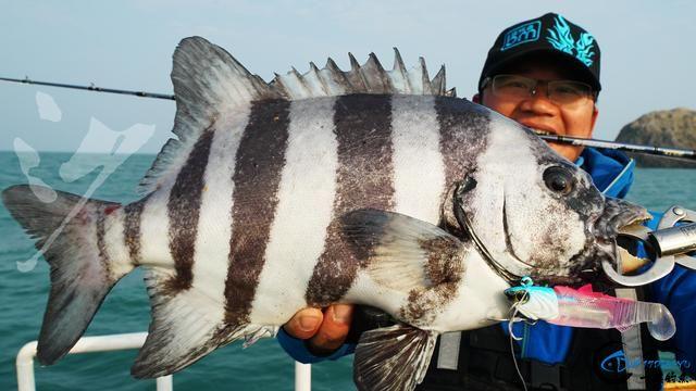 精选54张钓鱼图,分享给小伙伴们,年年有鱼!-53.jpg