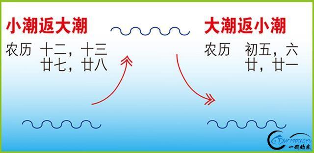 冬季海鲈攻略 系列一 礁上作战-6.jpg