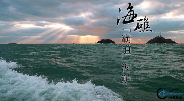 冬季海鲈攻略 系列二 船上作战-1.jpg